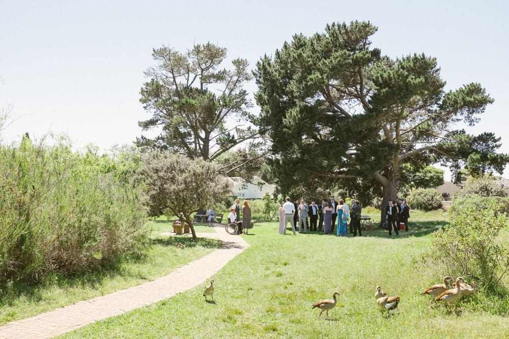 Small outdoor wedding under a tree